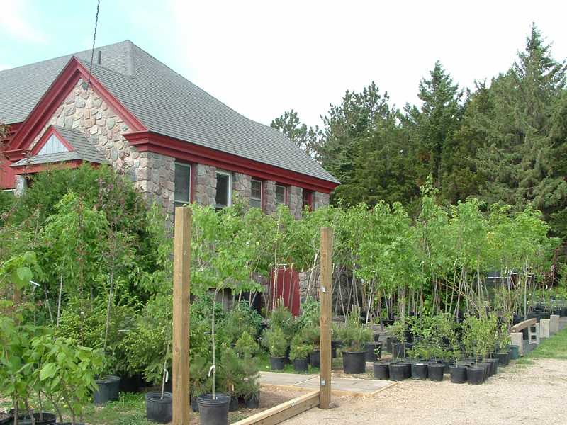 Trees & Shrubs for in-store pickup only
