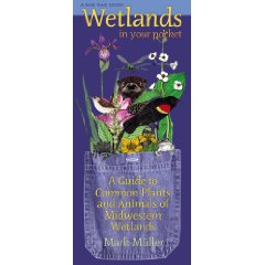 Pocket Series: Wetlands in Your Pocket