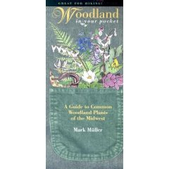 Pocket Series: Woodland in Your Pocket