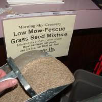 Seed Mixes
