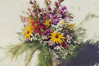 Native Plants for Fresh Cut Flowers