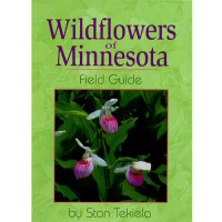 Wildflower_Of_MN